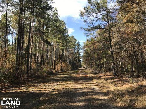 Calamus Pond 15 Acres : Summerville : Berkeley County : South Carolina