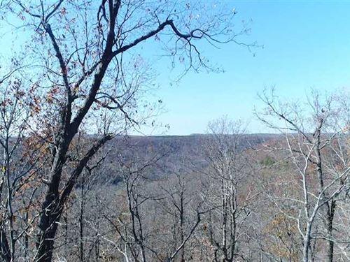 108 Acres Madison 4035 : Elkins : Madison County : Arkansas