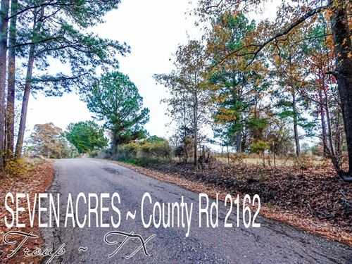 7.03 Acres In Smith County : Troup : Smith County : Texas
