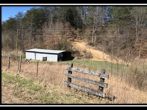 Little Barn On Wayne : Patriot : Gallia County : Ohio