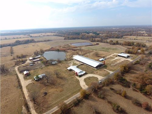 Large Acreage Dairy : Detroit : Red River County : Texas