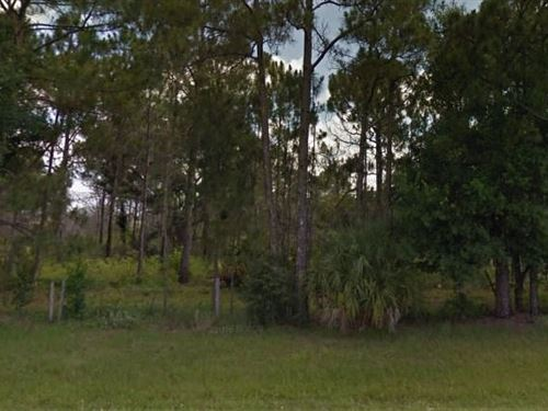 Highlands County, Fl $45,000 Neg : Avon Park : Highlands County : Florida