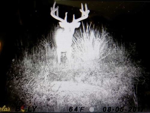 400 Acre Hunting Paradise Wit : Lawrence : Douglas County : Kansas