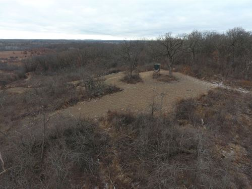 Top Noche Hunting Land With Pasture : Pardeeville : Columbia County : Wisconsin