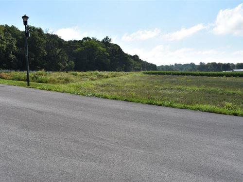Residential Development Lots : Hermann : Montgomery County : Missouri