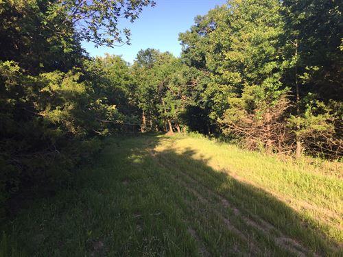 Recreational Hunting & Timber : Blackwater : Cooper County : Missouri