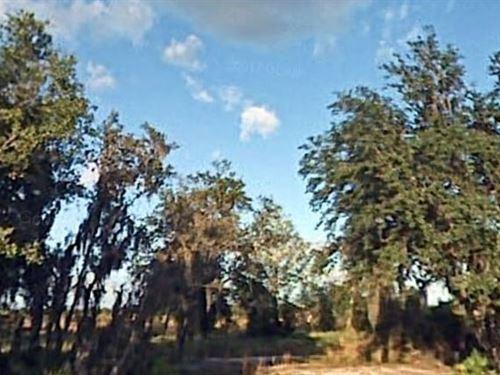 Polk County, Fl $12,000 Neg : Lake Wales : Polk County : Florida