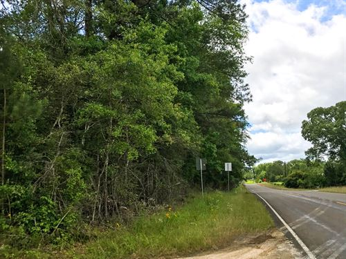 39 Acres Woodville : Woodville : Tyler County : Texas