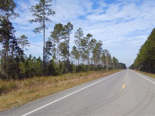 Lower Dalkeith : Wewahitchka : Gulf County : Florida