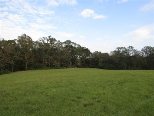10 Acres In Hinds County, Ms : Raymond : Hinds County : Mississippi