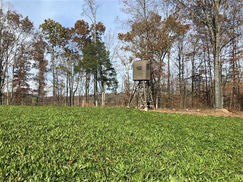 33.63 Acres of Prime Hunting Land : Hampshire : Maury County : Tennessee