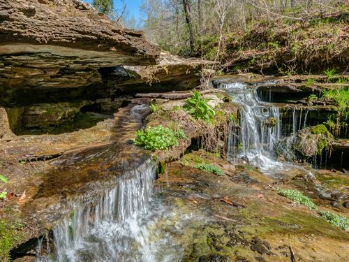 30 Acres With Waterfall : Ethridge : Giles County : Tennessee