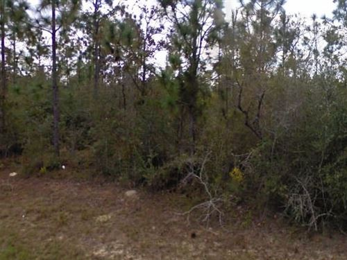 Washington County, Fl $42,000 Neg : Chipley : Washington County : Florida