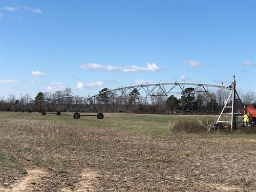 Great Irrigated Farm - Red Springs : Maxton : Robeson County : North Carolina