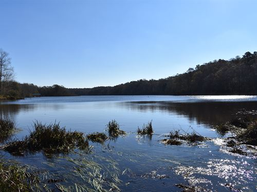10-024 Skipper Mill Creek : Greenville : Butler County : Alabama