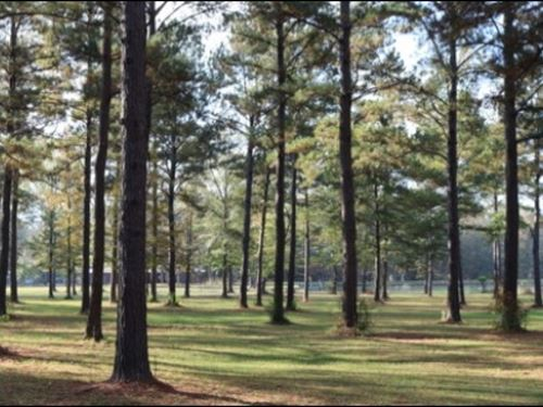 80 Acres With A Home In Newton Coun : Hickory : Newton County : Mississippi