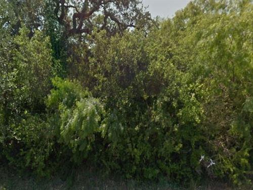 Bee County, Tx $27,500 Neg : Beeville : Bee County : Texas