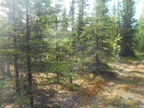 Near Soldotna, Alaska, Treed 4 Acr : Soldotna : Kenai Peninsula Borough : Alaska