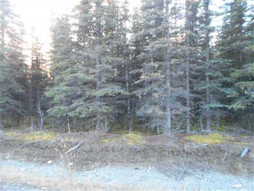 Alaskan Kenai River Access Lot Wit : Soldotna : Kenai Peninsula Borough : Alaska
