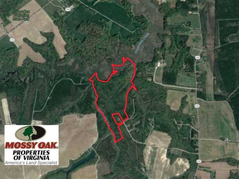 99 Acres Of Waterfront Timber Land