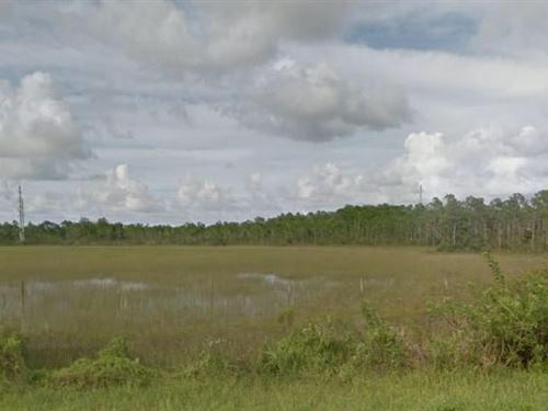 Martin County, Fl $52,000 Neg : Indiantown : Martin County : Florida
