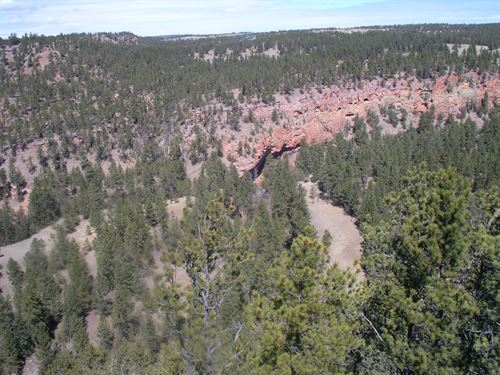 Red Canyon Rim : Custer : South Dakota