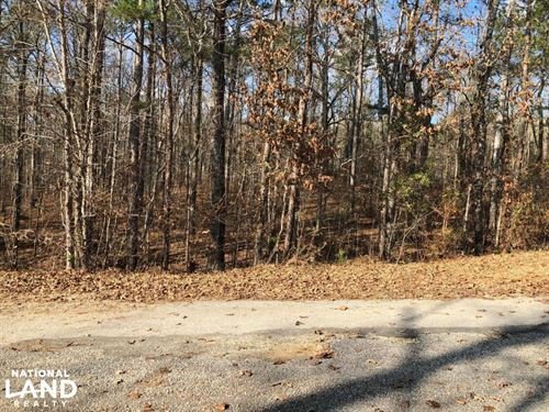 Cedar Grove Road Homesite OR Develo : Wilsonville : Shelby County : Alabama