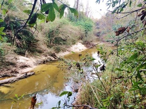 Hunting Recreation Development Land : Saucier : Harrison County : Mississippi