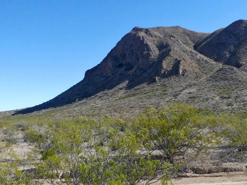 40 Acres With Lots Of Elevation : Terlingua : Brewster County : Texas