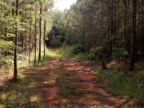 Saluda River Acreage Tract A : Ware Shoals : Greenwood County : South Carolina