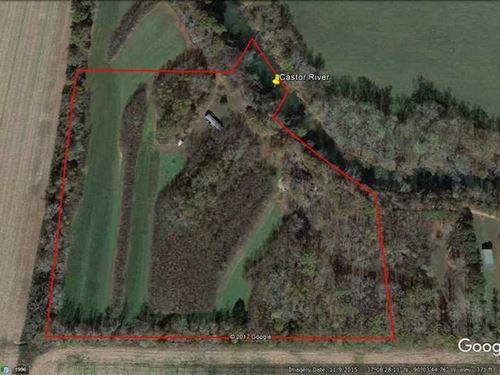 20 Acres For Sale in Zalma, Missou : Puxico : Butler County : Missouri