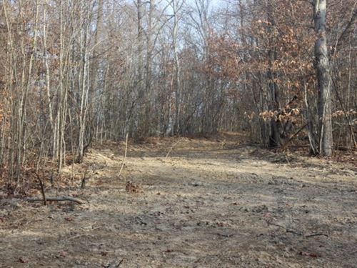 Mount Carmel Rd Tract 3 - 10 Acres : Thurman : Gallia County : Ohio