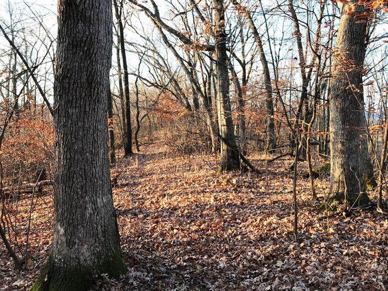 59+/- Hidden Acres : Lone Rock : Richland County : Wisconsin