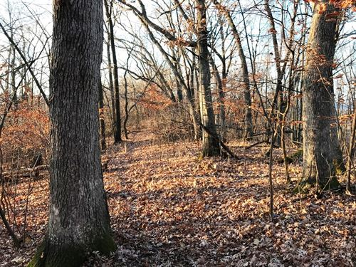 59+/- Hidden Acres : Lone Rock : Richland County : Wisconsin