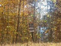 Norris Lake View Building Lot : New Tazewell : Claiborne County : Tennessee
