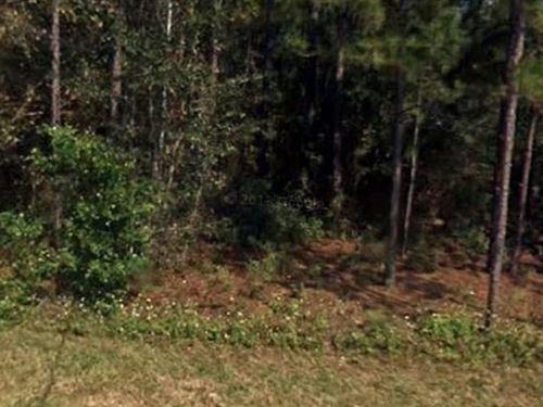 Marion County, Fl $50,000 Neg : Dunnellon : Marion County : Florida