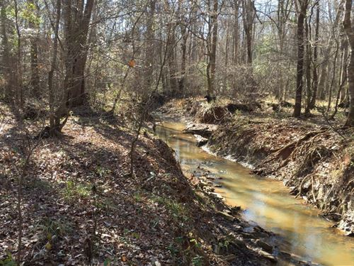 Chambers County Alabama Land For Sale Landflip