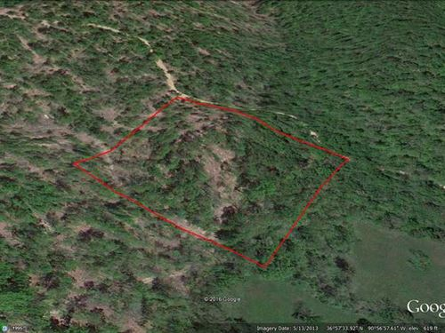 40 Acres For Sale in Carter County : Ellsinore : Carter County : Missouri
