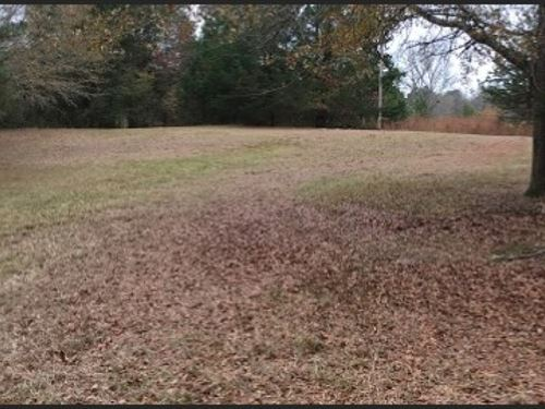 3.2 Acres In Leake County : Lena : Leake County : Mississippi