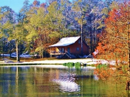 Secluded Cabin For Sale Pond Fishin : Centreville : Amite County : Mississippi