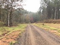 Local Hunting Escape : Pelahatchie : Rankin County : Mississippi
