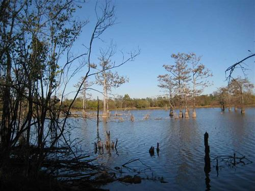 38.05 Acre Deer & Duck Hunting : Harrisonburg : Catahoula Parish : Louisiana