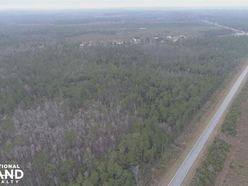 Glynn County Family Estate : Hortense : Glynn County : Georgia