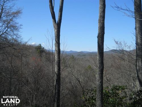 East Fork of The French Broad River : Brevard : Transylvania County : North Carolina