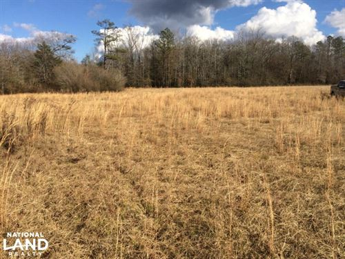 Hwy 17 Reform Homesite Tract : Reform : Pickens County : Alabama