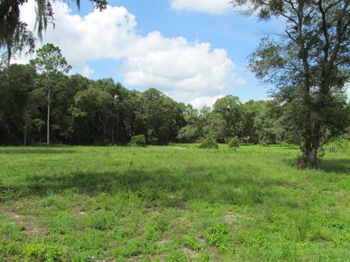 Reduced 2.68 Ac Commercial 772486 : Chiefland : Levy County : Florida