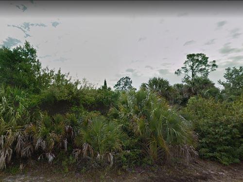 .29 Acres In Port Charlotte, FL : Port Charlotte : Charlotte County : Florida