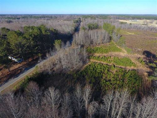 Reduced, 2 Acres of Residential : Whitakers : Nash County : North Carolina