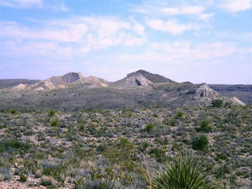 446 Acre Ranch : Terlingua : Brewster County : Texas