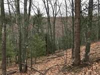 Silver Creek Recreation Mls 1105931 : Marquette : Marquette County : Michigan